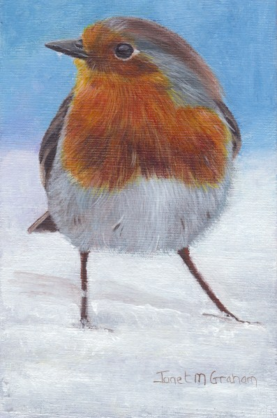 """Robin (Bird)"" original fine art by Janet Graham"