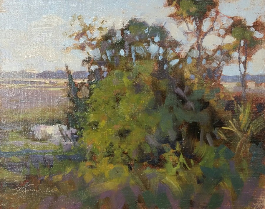 """Kiawah Island Excursion"" original fine art by Barbara Jaenicke"