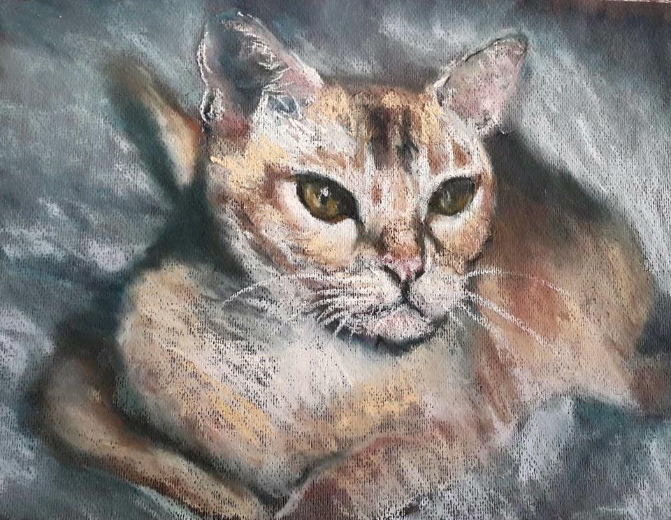 """Pastel cat"" original fine art by Rentia Coetzee"