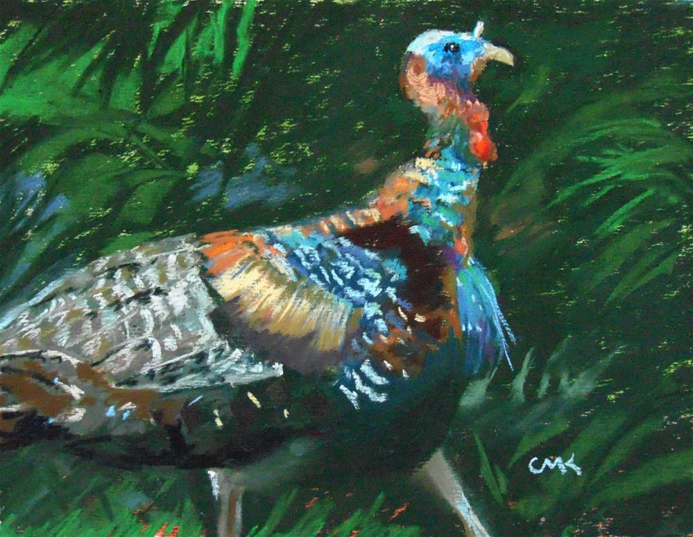 """Gobbler in the Cypress"" original fine art by Catherine Kauffman"
