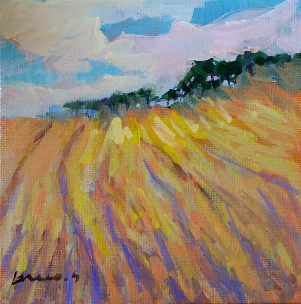 """""""wheat field"""" original fine art by salvatore greco"""
