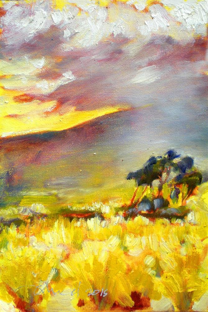 """Hualalai Morning Glow - 150524s"" original fine art by richard rochkovsky"