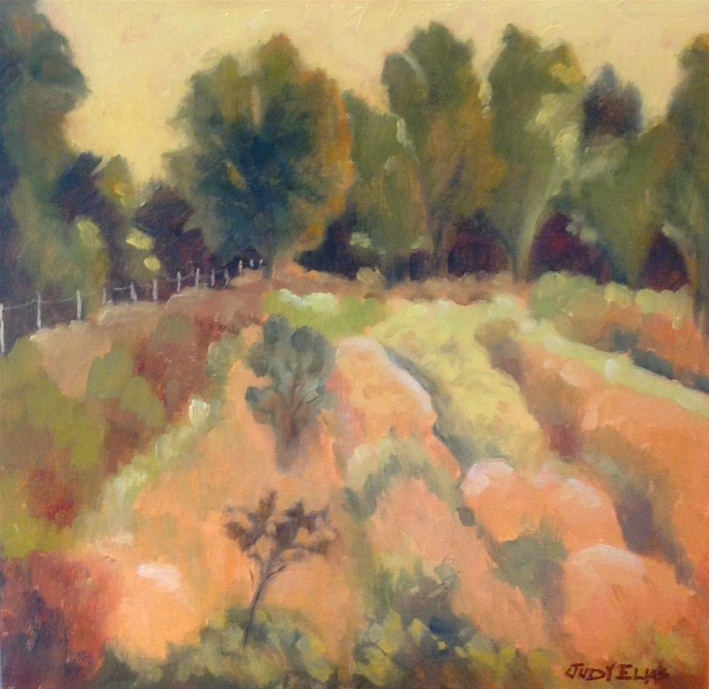"""Late Afternoon"" original fine art by Judy Elias"