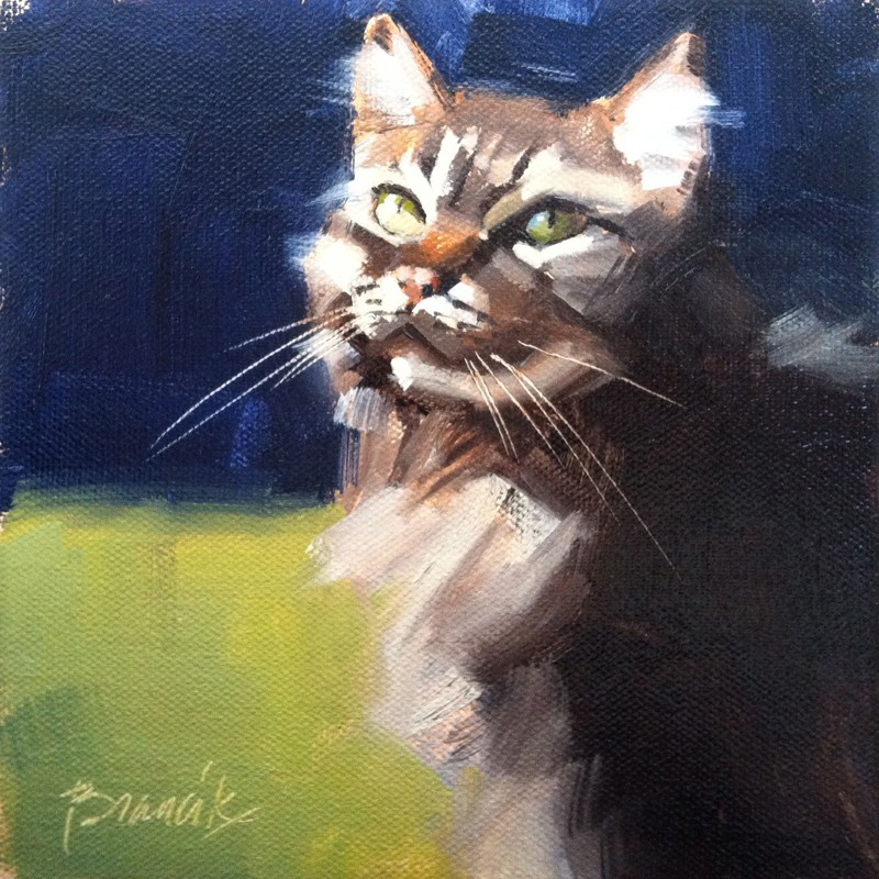 """Maine Coon 3"" original fine art by Candace Brancik"