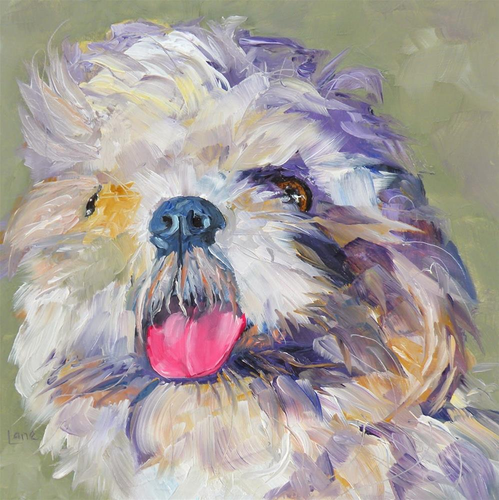 """BUMPER 41/100 OF 100 PET PORTRAITS IN 100 DAYS © SAUNDRA LANE GALLOWAY"" original fine art by Saundra Lane Galloway"