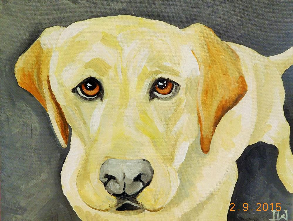 """Yellow Lab"" original fine art by Daryl West"