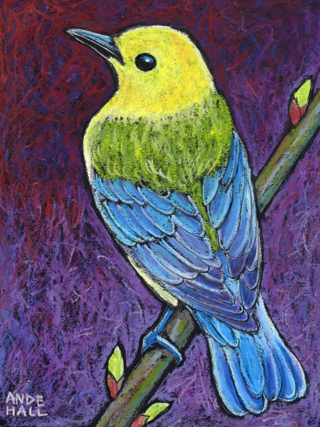 """Prothonotary Warbler 3"" original fine art by Ande Hall"