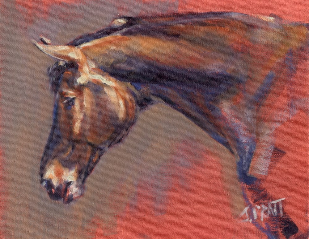 """Mare Study"" original fine art by Jennifer Pratt"