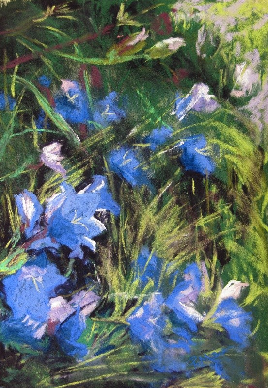 """Campanula"" original fine art by Ruth Mann"