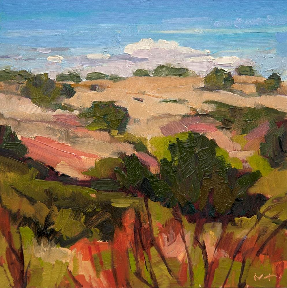"""Galisteo 1.11.2016"" original fine art by Miriam Hill"