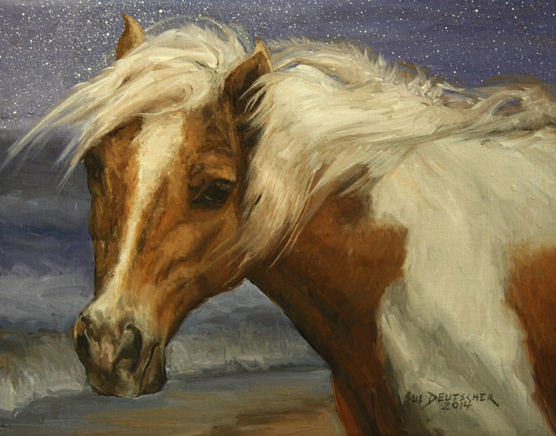 """""""Assateague Pony 140305"""" original fine art by Sue Deutscher"""