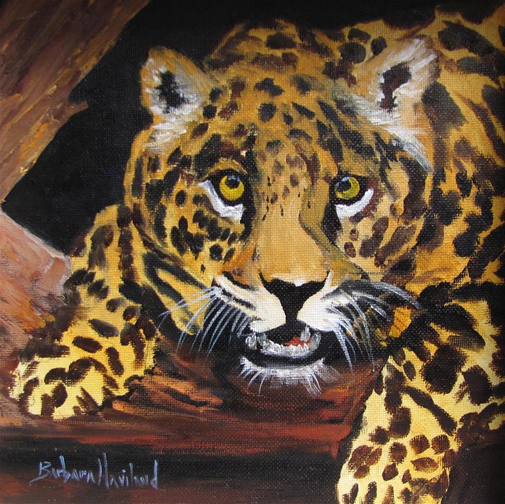 """Leopard "" original fine art by Barbara Haviland"