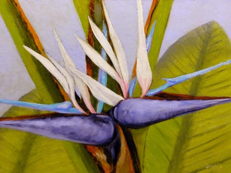 """White Birds Of Paradise I"" original fine art by Dalan Wells"