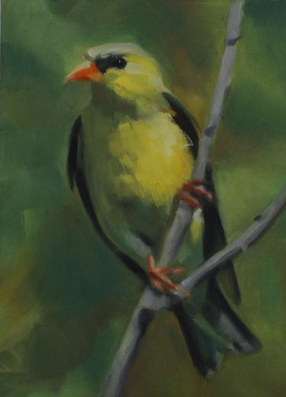 """""""Goldfinch"""" original fine art by Pamela Poll"""