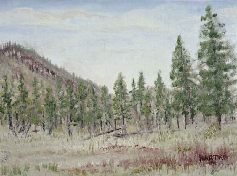 """Flagstaff Afternoon"" original fine art by Janice Bartke Thompson"