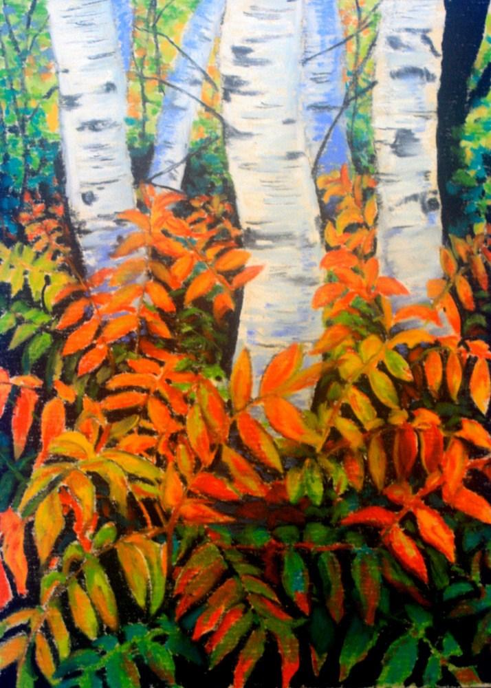 """Birches & Red Sumac"" original fine art by Jill Bates"