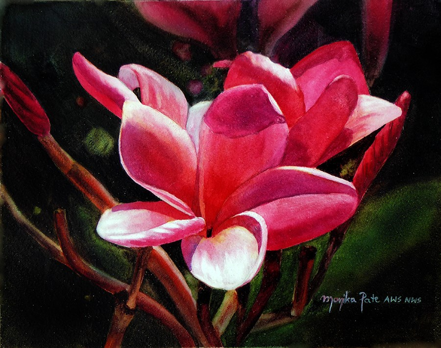 """Plumeria"" original fine art by Monika Pate"
