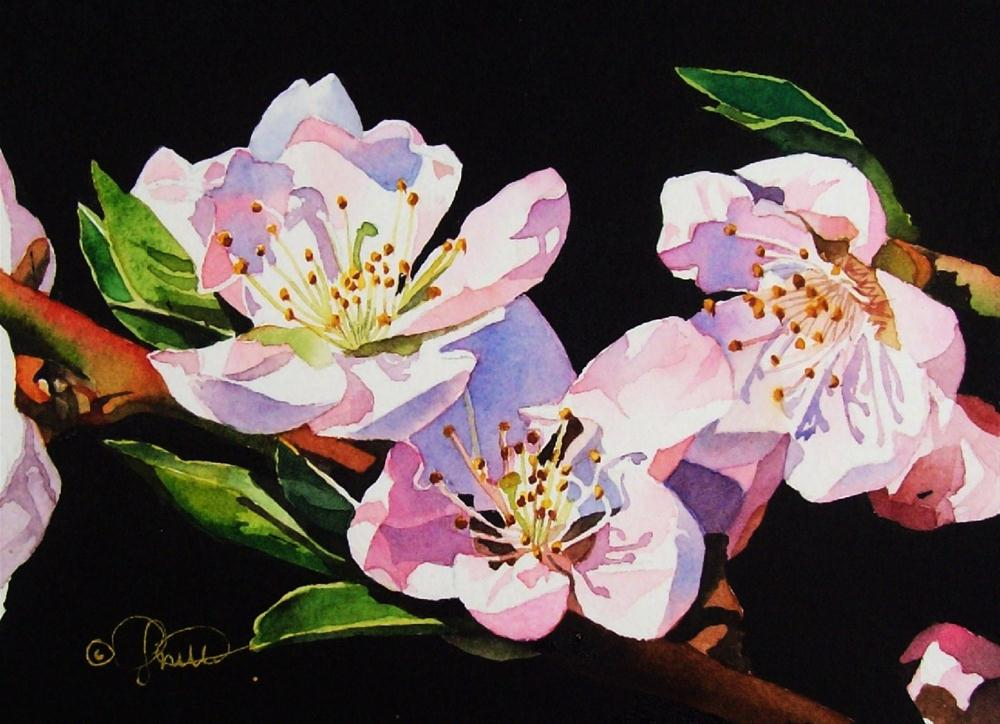 """Apple Blossoms"" original fine art by Jacqueline Gnott, whs"