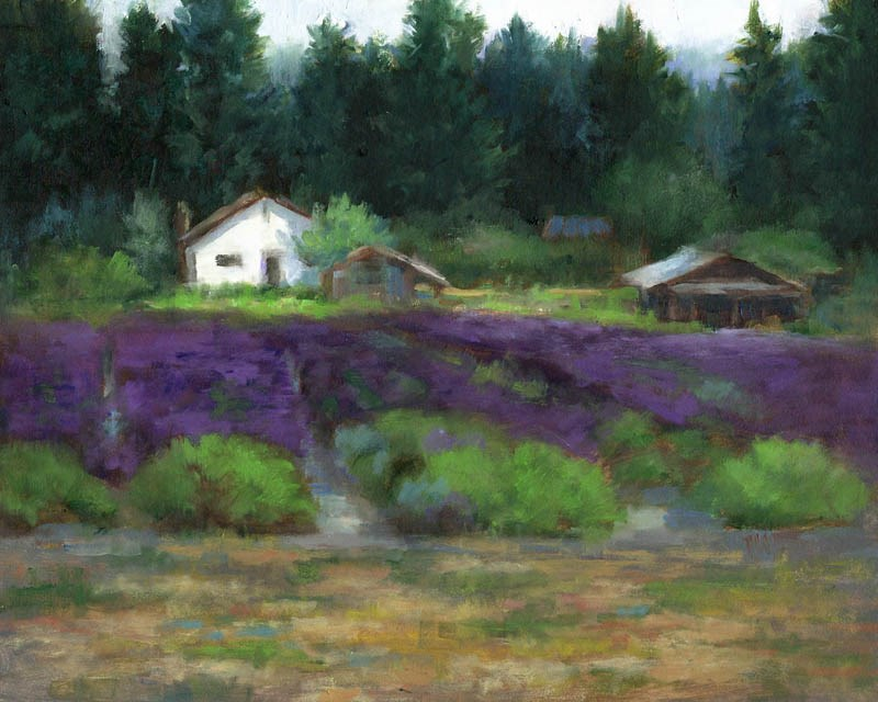 """Lavender Fields I"" original fine art by Linda Jacobus"