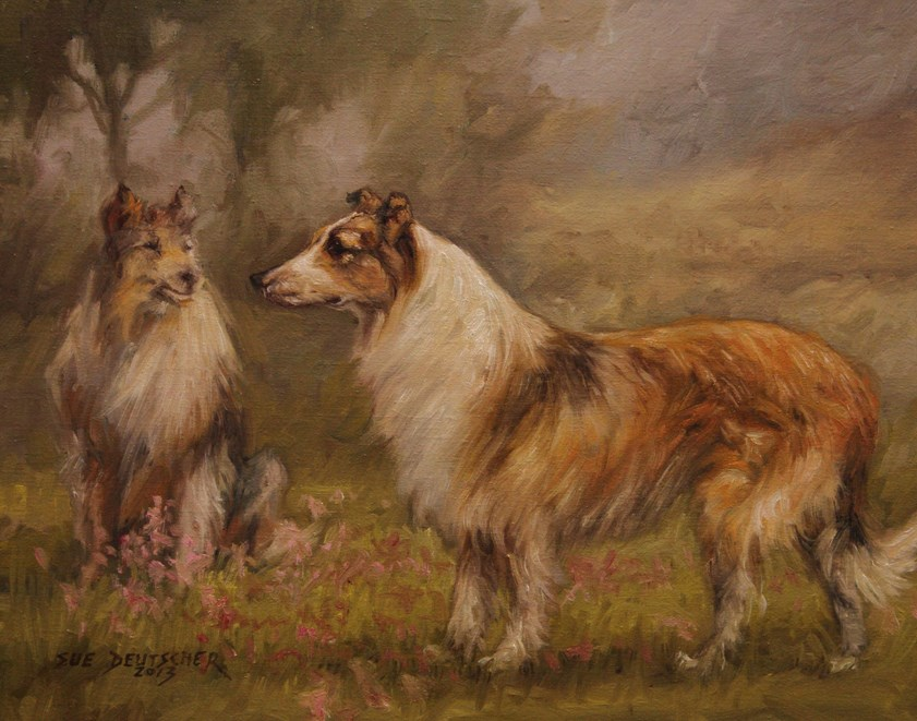 """Collies"" original fine art by Sue Deutscher"