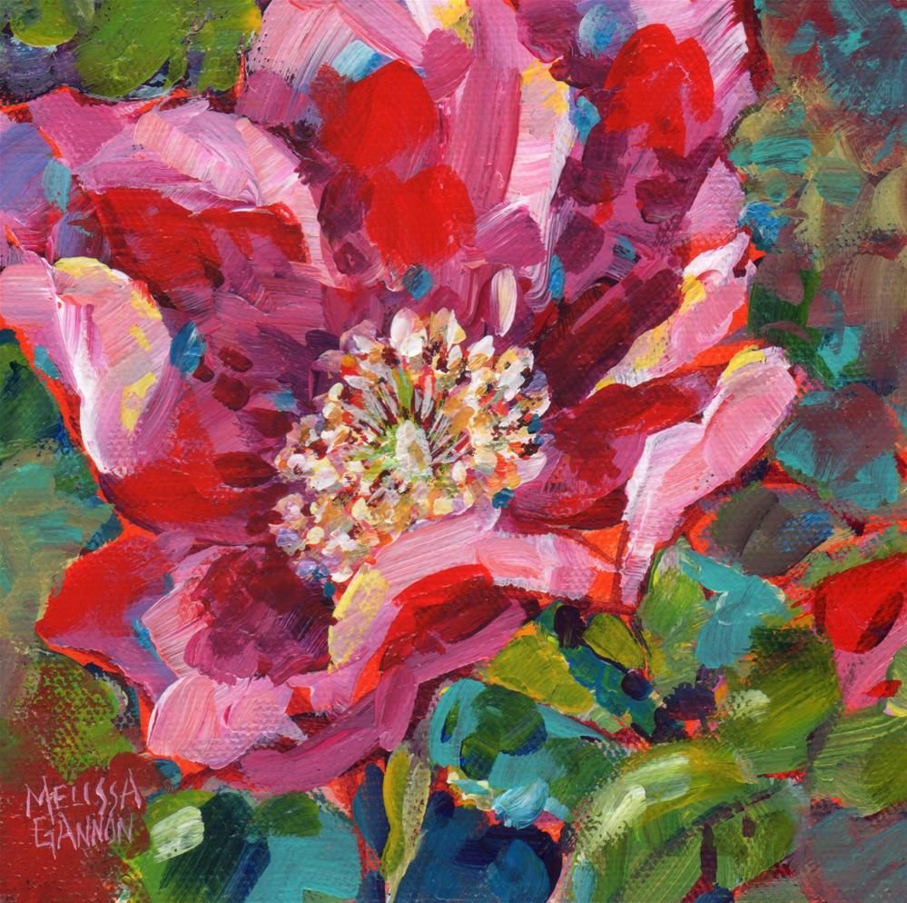 """Wild Rose Bloom"" original fine art by Melissa Gannon"