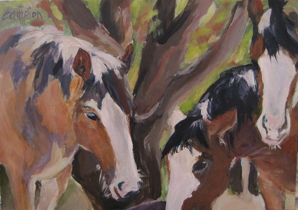 """Quiet Observers"" original fine art by Diane Campion"