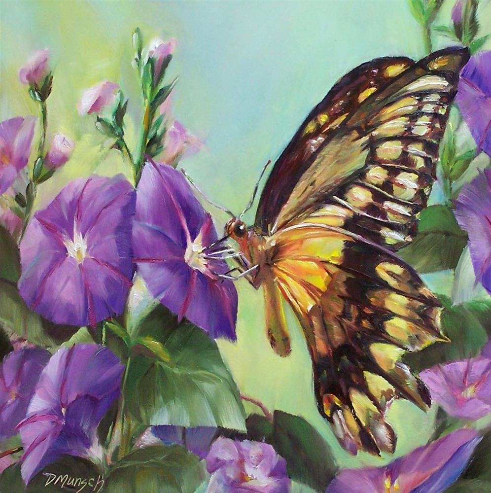"""Morning Glory Butterfly"" original fine art by Donna Munsch"