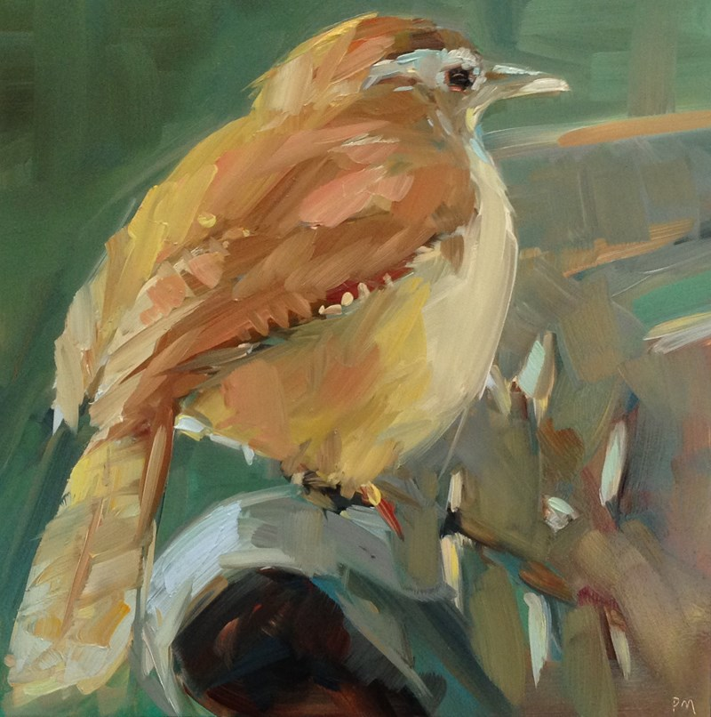 """Carol the Carolina Wren"" original fine art by Patti McNutt"