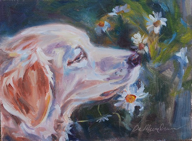 """Stop and Smell the Daisies"" original fine art by Carol DeMumbrum"