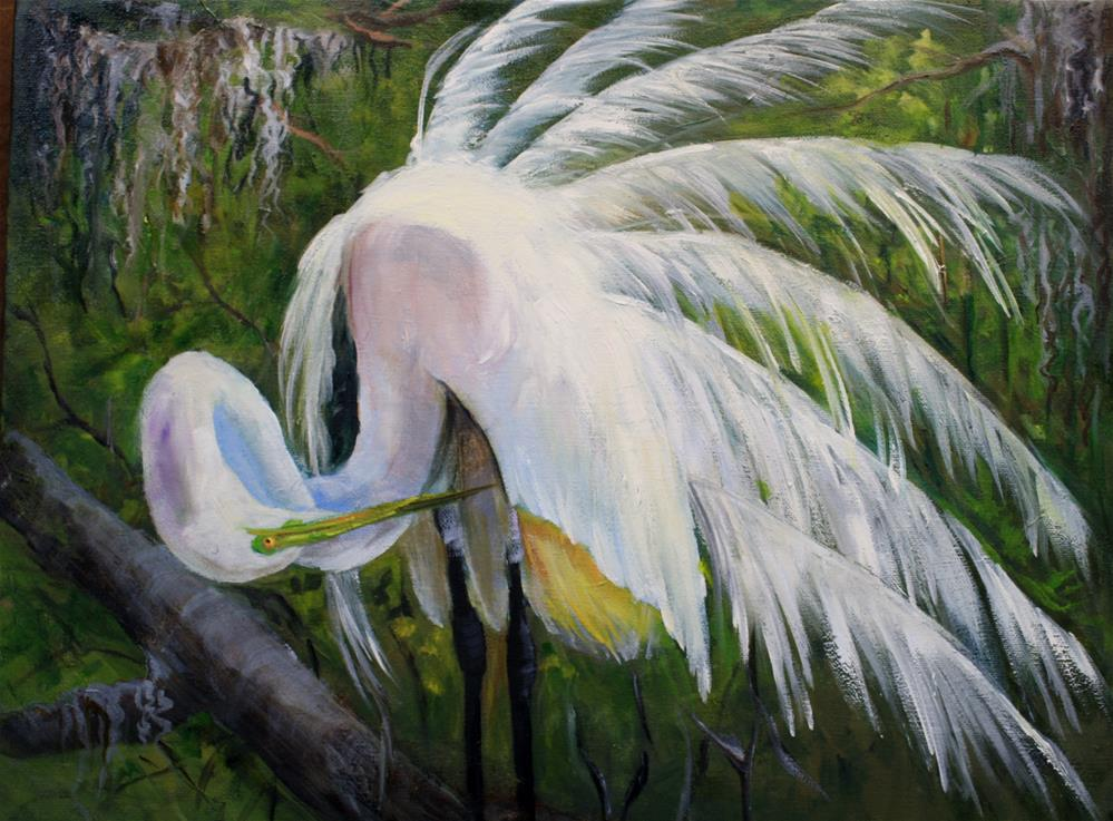 """Pretty Boy Preening Egret"" original fine art by Barbara Haviland"