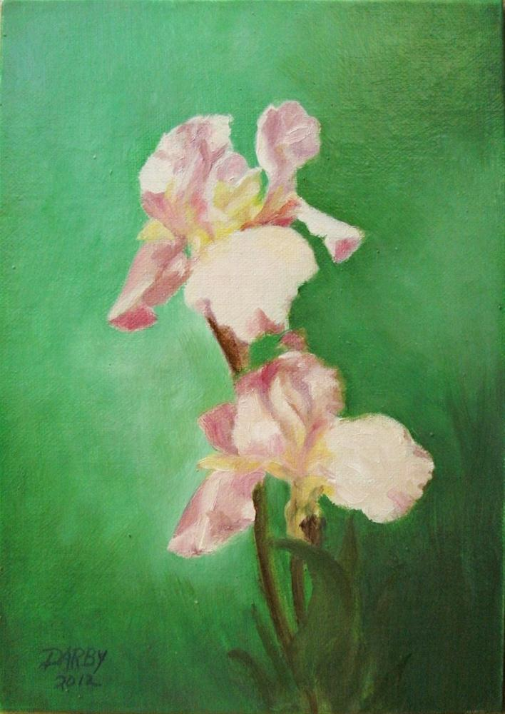 """Pale Iris"" original fine art by Lynn Darby"
