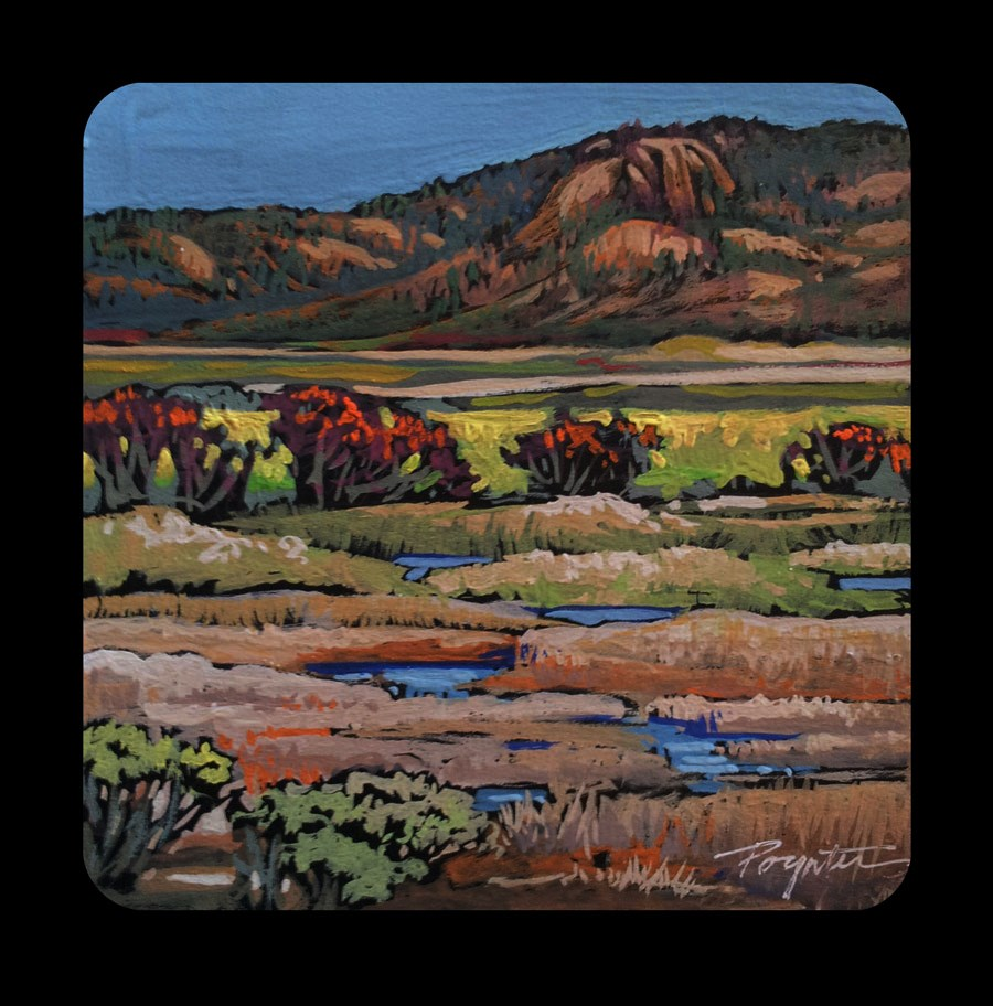 """3.19 Okanagan valley marsh"" original fine art by Jan Poynter"