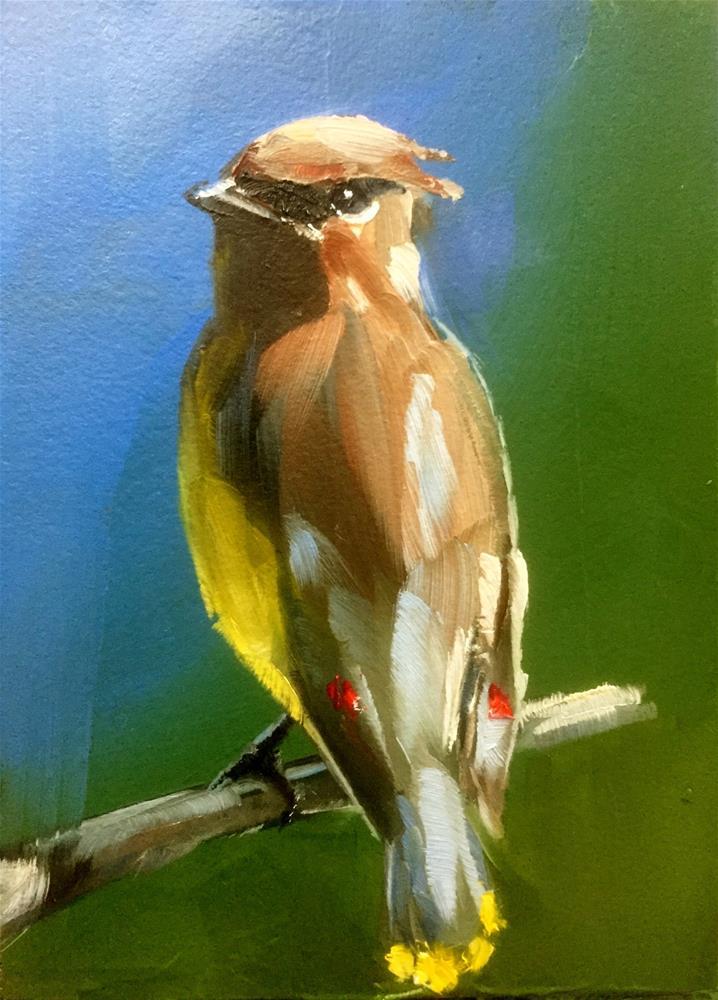 """""""Cedar Waxwing"""" original fine art by Gary Bruton"""