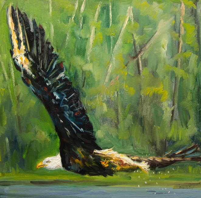 """ARTOUTWEST EAGLE WILDLIFE ANIMAL ART OIL PAINTING"" original fine art by Diane Whitehead"