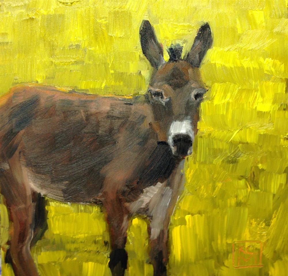 """Burro, 6x6 Inch Oil Painting by Kelley MacDonald"" original fine art by Kelley MacDonald"