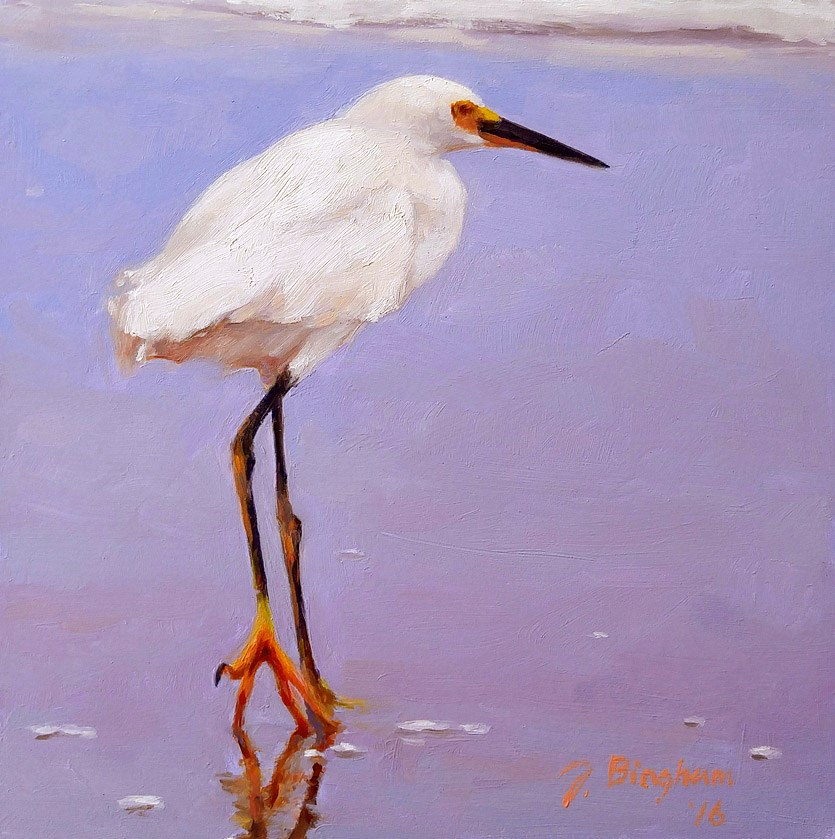 """Snowy Egret"" original fine art by Joanna Bingham"