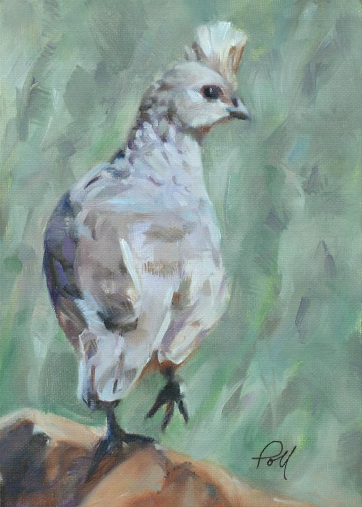 """Scaled Quail"" original fine art by Pamela Poll"
