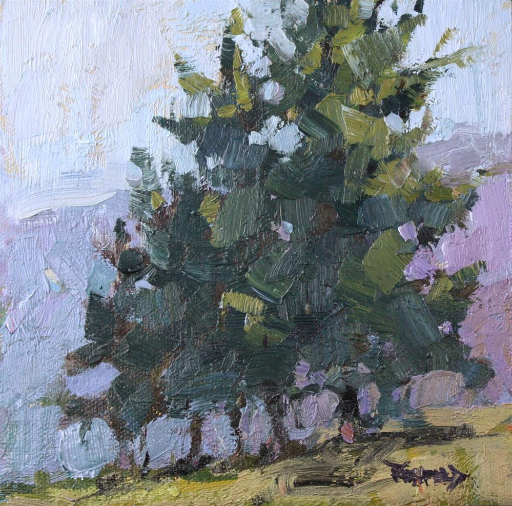 """Stand of Pines"" original fine art by Cathleen Rehfeld"