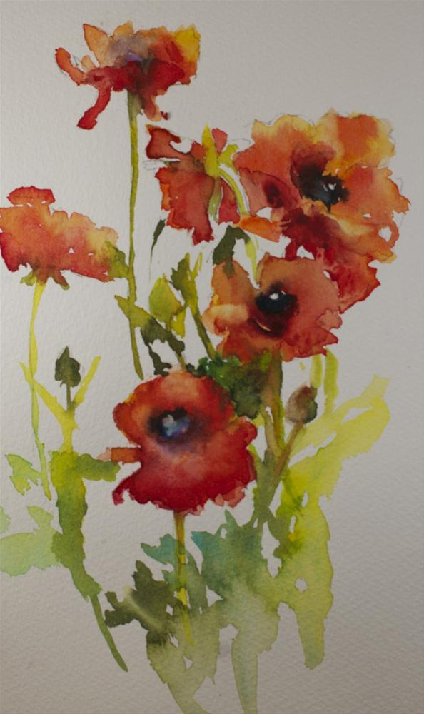 """Poppy Study"" original fine art by Sue Churchgrant"