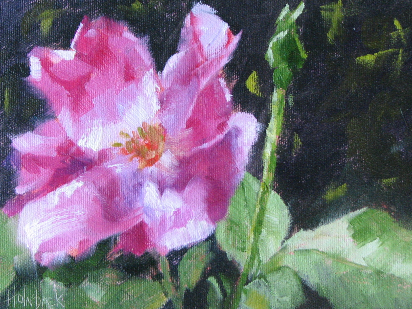 """100 Garden & Floral Oil Paintings, Original Artwork by Pam Holnback, 67/100"" original fine art by Pam Holnback"