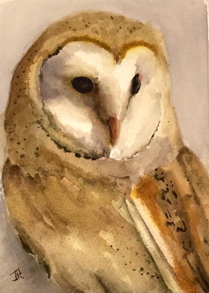"""""""Barn Owl"""" original fine art by June Rollins"""