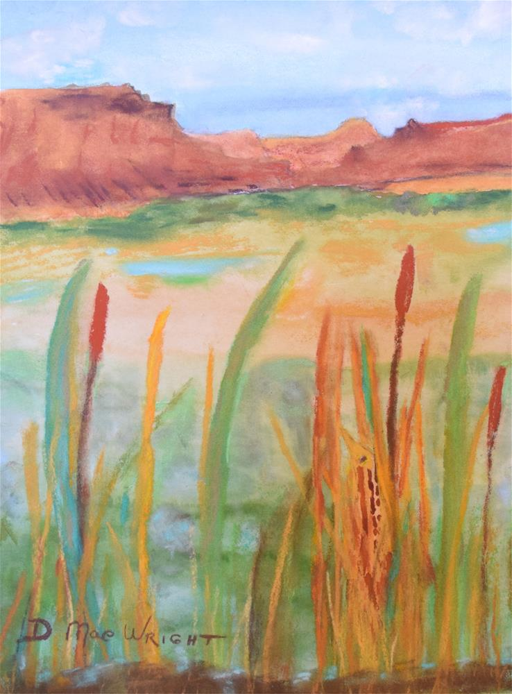 """Bittern at Potholes"" original fine art by D Mae Wright"