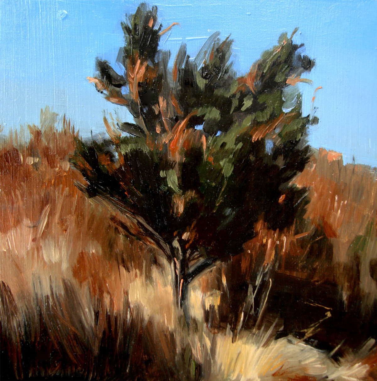 """Ocean Tree at Clay Cliffs of Aquinnah, Martha's Vineyard"" original fine art by Michael William"