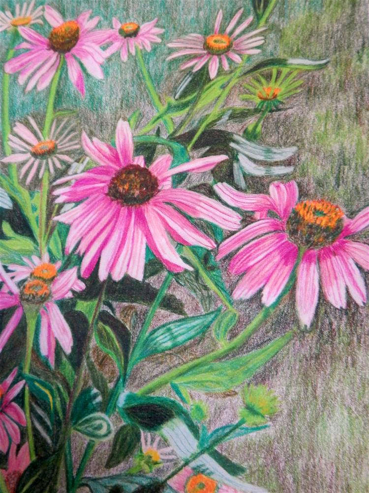 """Purple Cone Flowers"" original fine art by Elaine Shortall"