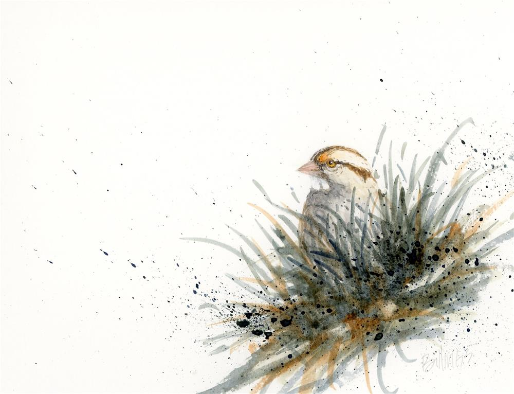 """Sparrow Study X"" original fine art by Susanne Billings"