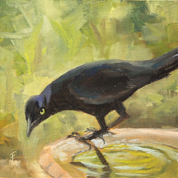 """Grackle Perch"" original fine art by Jane Frederick"