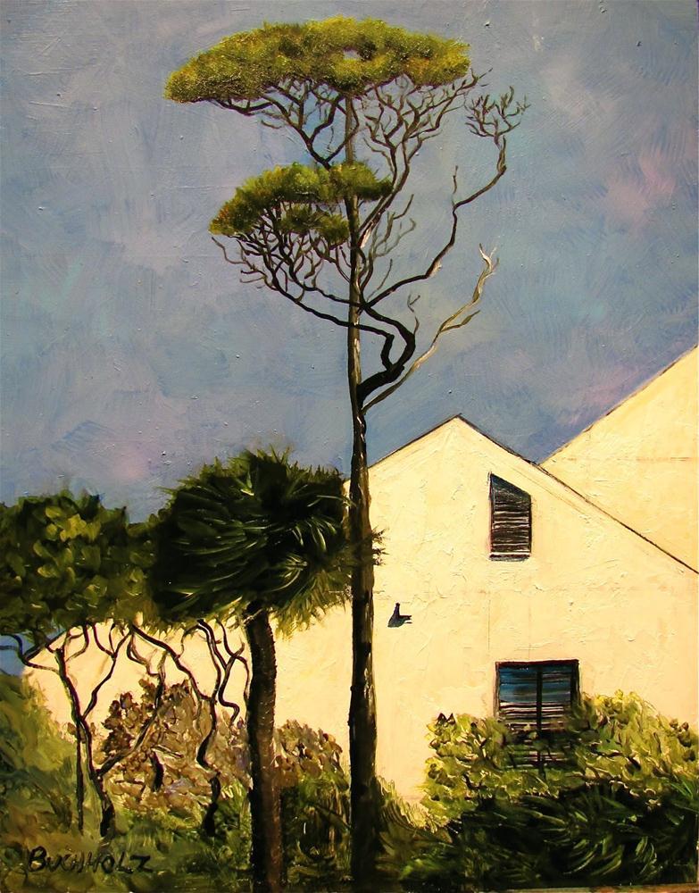 """Whitewalled"" original fine art by Terri Buchholz"