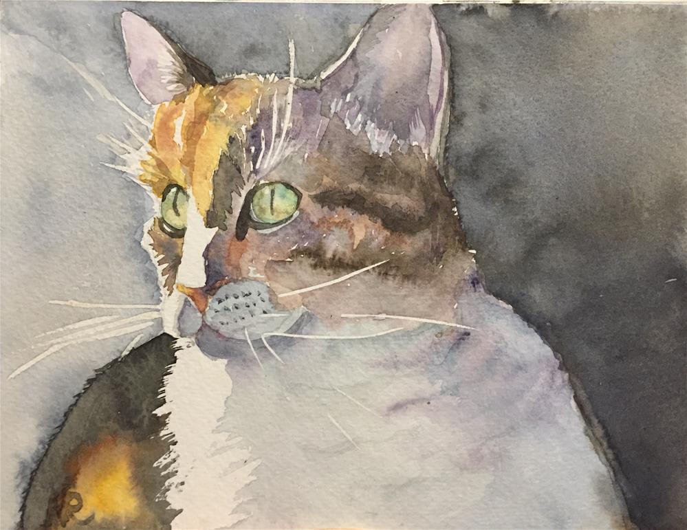"""A cat "" original fine art by Natasha Ramras"
