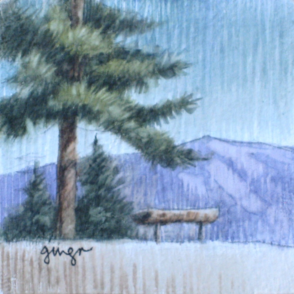 """View from the Forest Road"" original fine art by Ginger Pena"