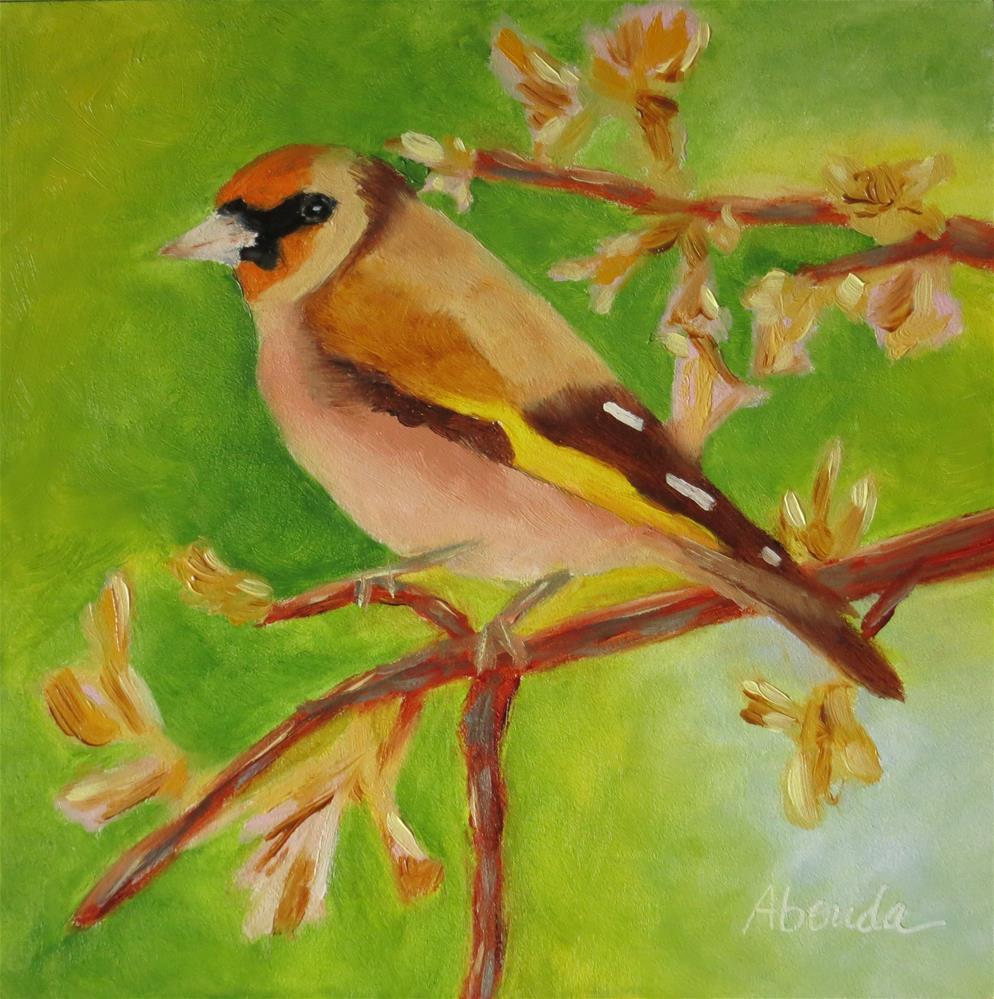 """Goldfinch"" original fine art by Sandy Abouda"
